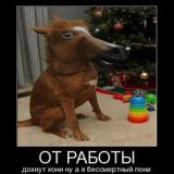 Увеличен пенсионный возраст в Беларуси.